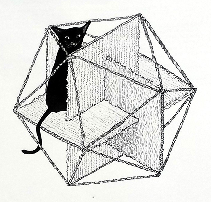 Icosahedron For Cats
